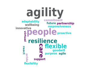 Word cloud completed during our online session